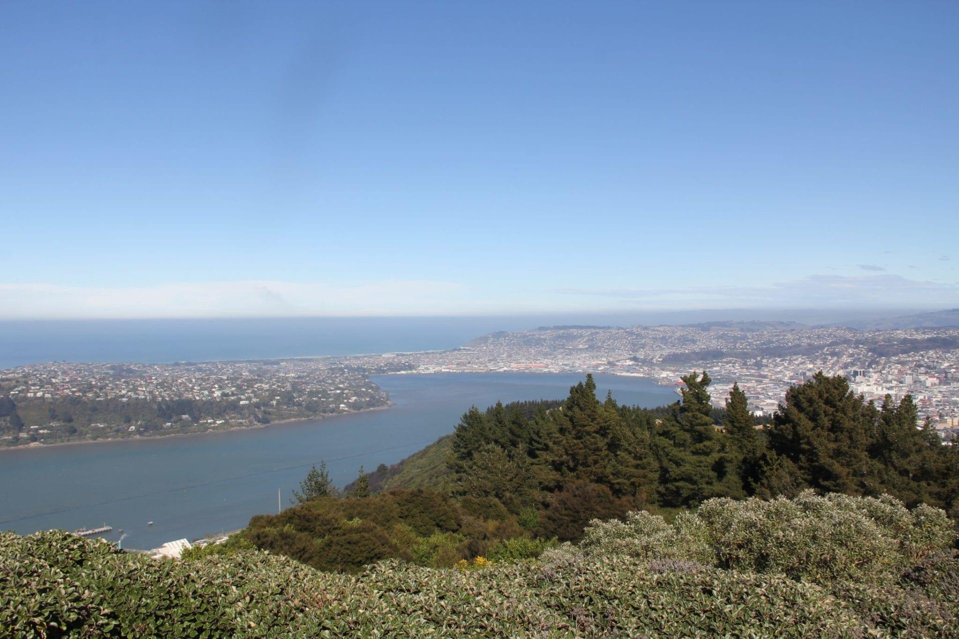 Dunedin Signal Hill Lookout