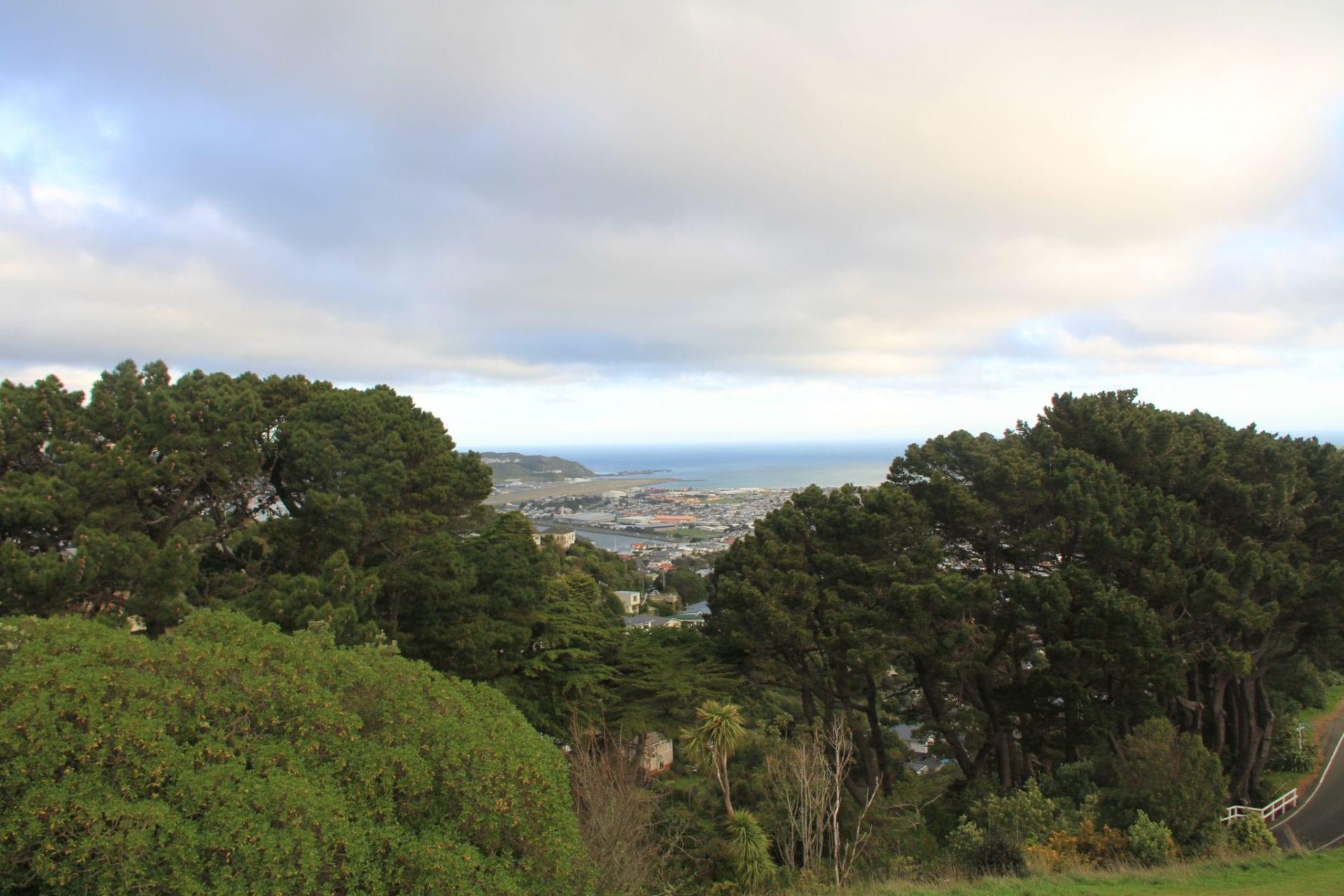 Wellington Mount Victoria 2