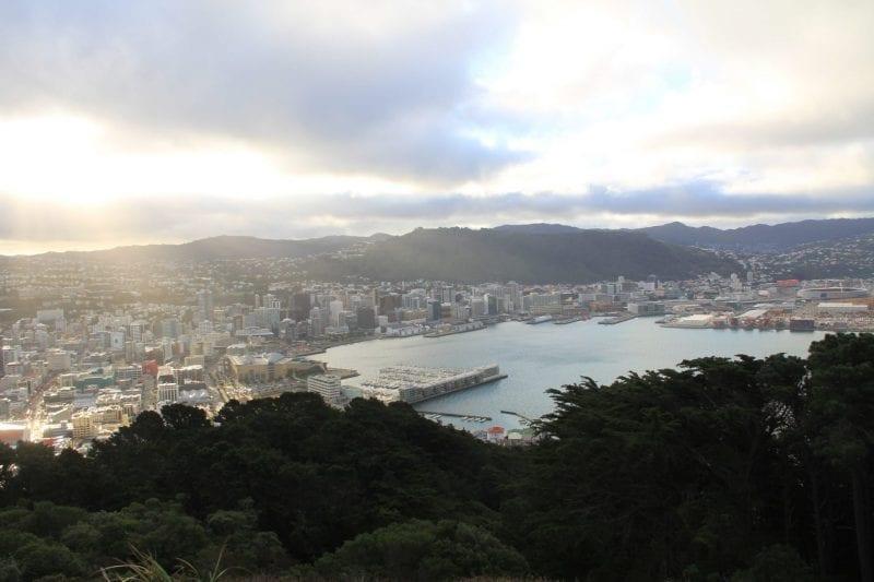 Wellington Mount Victoria 5