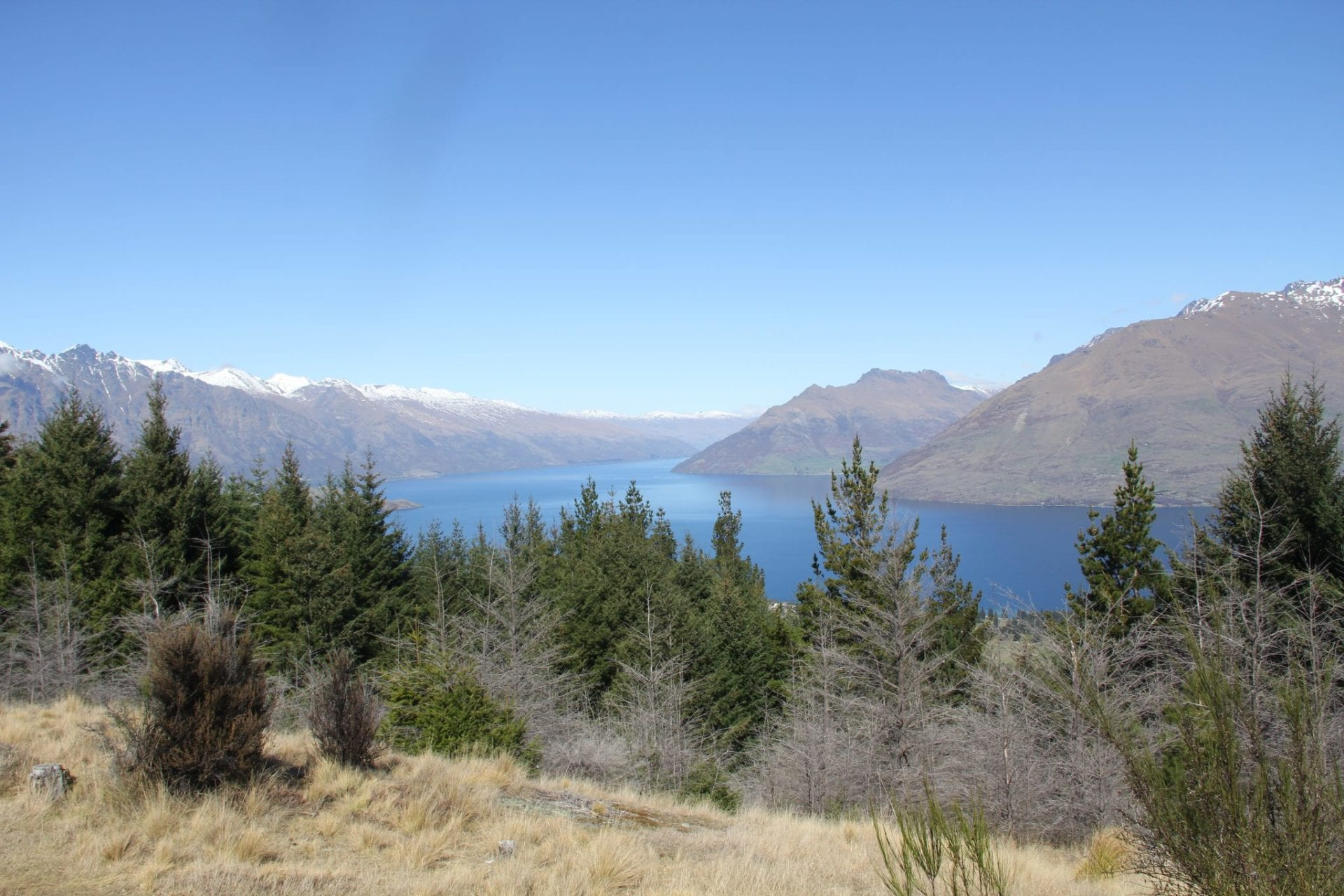 Queenstown Hill 3