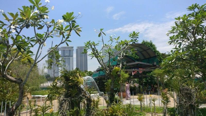 Kuala Lumpur Orchid Garden 2