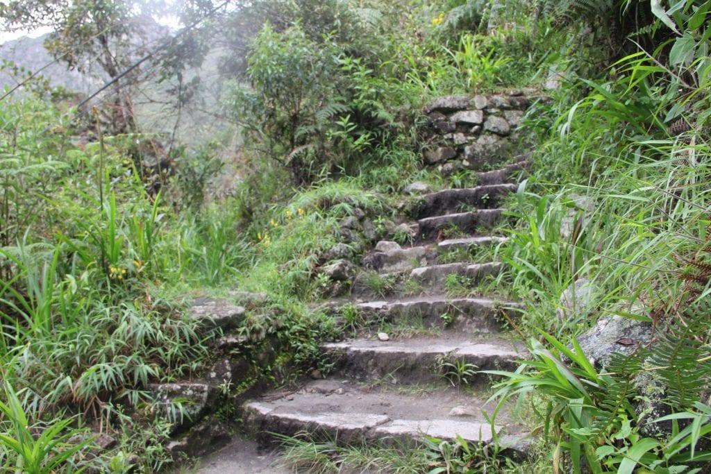 Machu Picchu 9