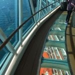Majestic Princess Skywalk 1