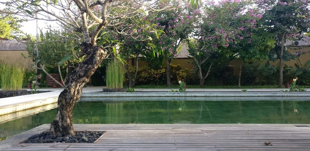 Amarterra Villas Bali Nusa Dua Pool 2