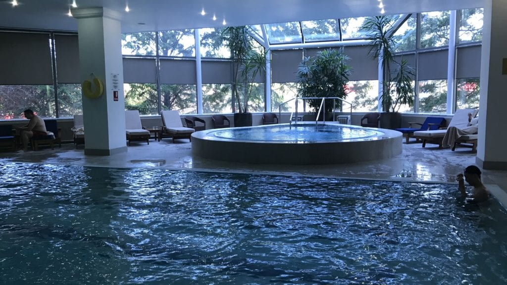 Hyatt Regency Belgrad Pool Whirlpool
