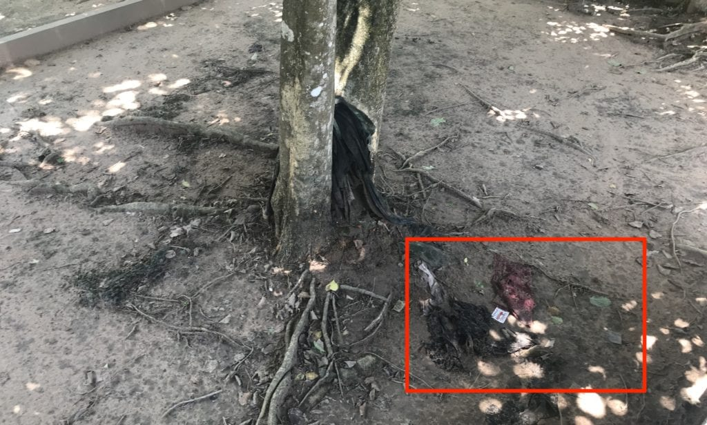 Cheoung Ek Killing Field Kambodscha Kleiderfetzen Am Boden