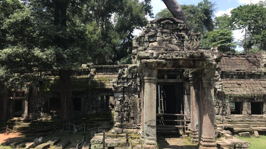 Angkro Wat Ta Prohm Eingang 2