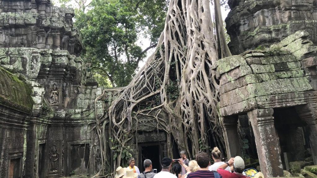 Angkro Wat Ta Prohm Ranken Über Der Tür 2