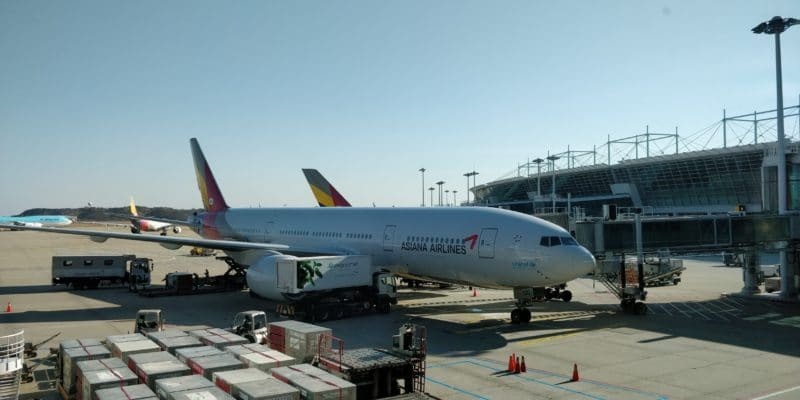 Asiana Airbus A330