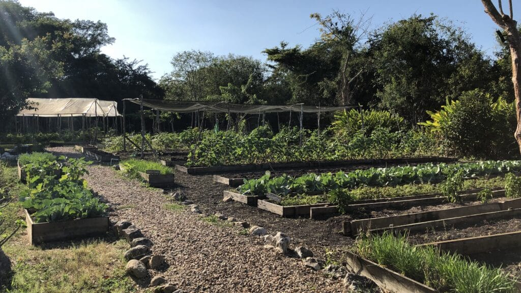 Ka'ana Resort San Ignacio Belize Master Casita Gärten
