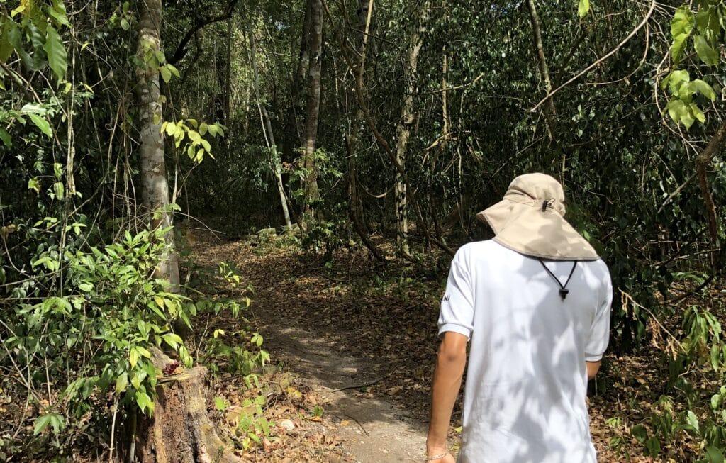 Ka'ana Resort San Ignacio Belize Tikal Dschungel