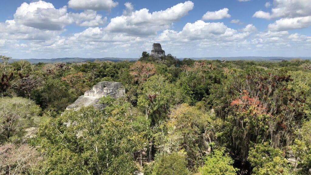 Tikal Ausblick 3