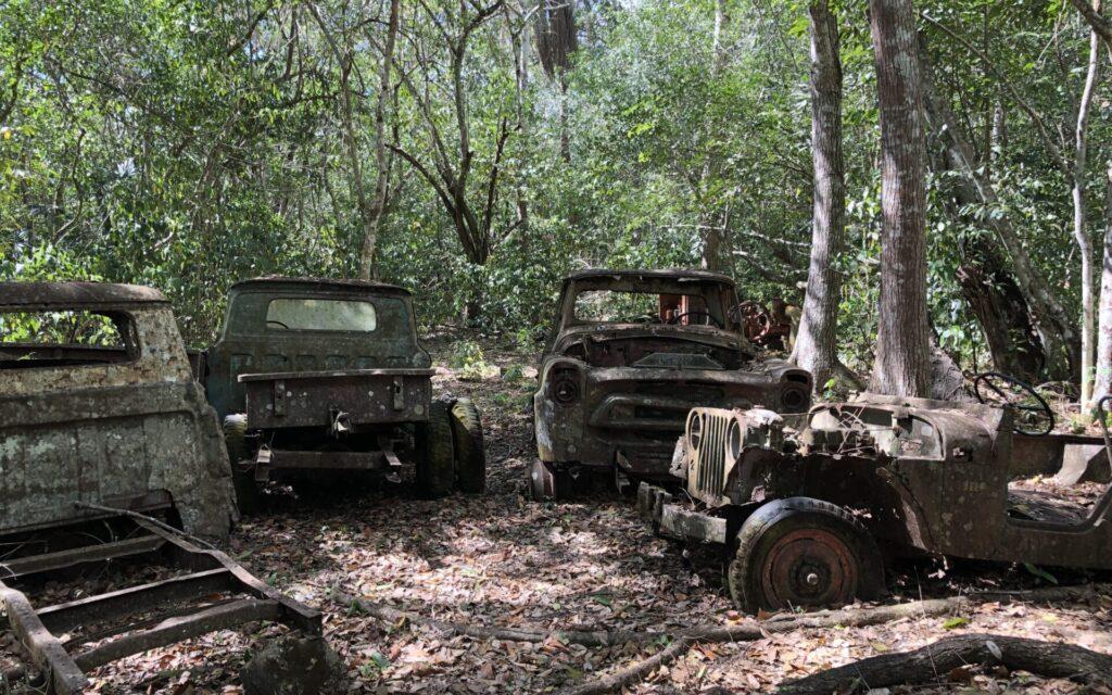 Tikal Auto Ruinen
