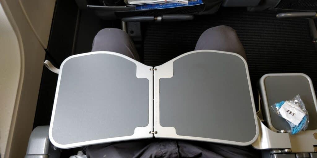 SAS Premium Economy Class Airbus A330 Sitz 8