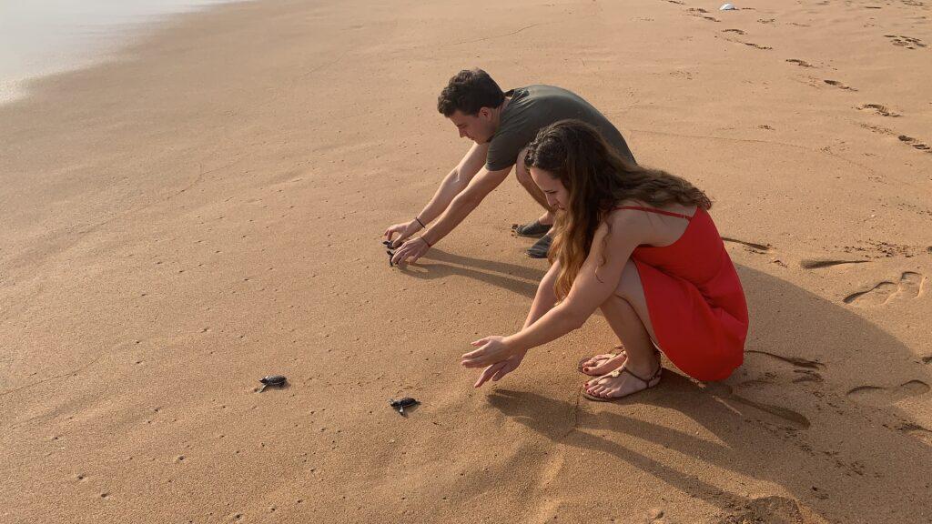 Jan Marieke Sri Lanka Schildkröten