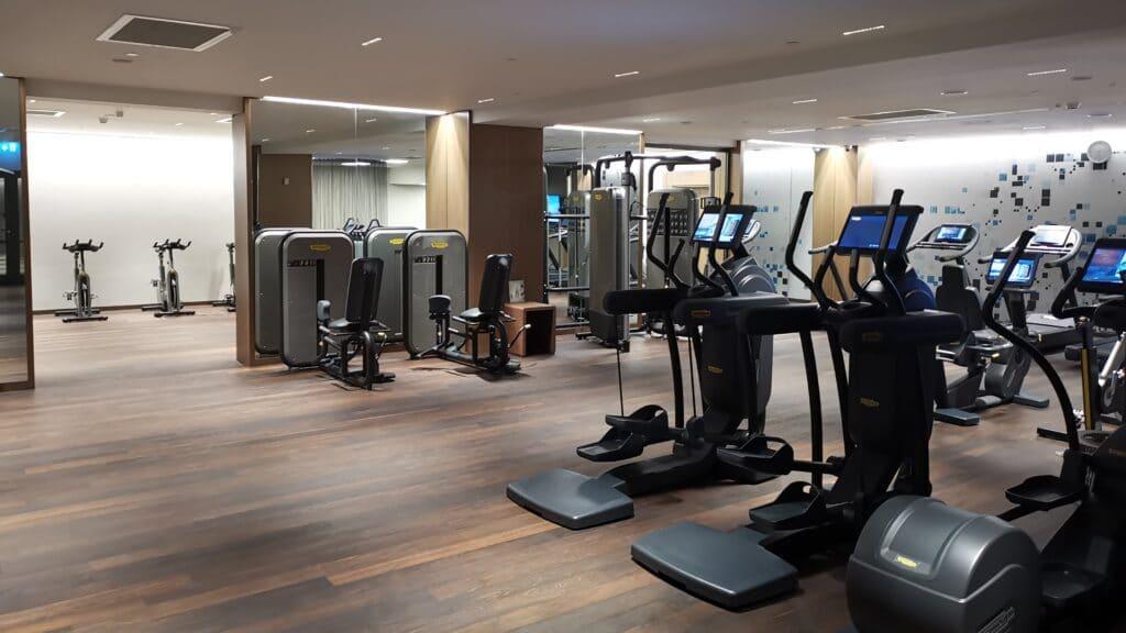 Sheraton Grand Tiflis Fitnessbereich