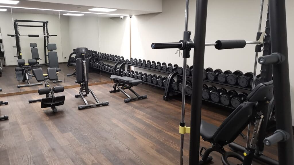 Sheraton Grand Tiflis Gym Krafttraining