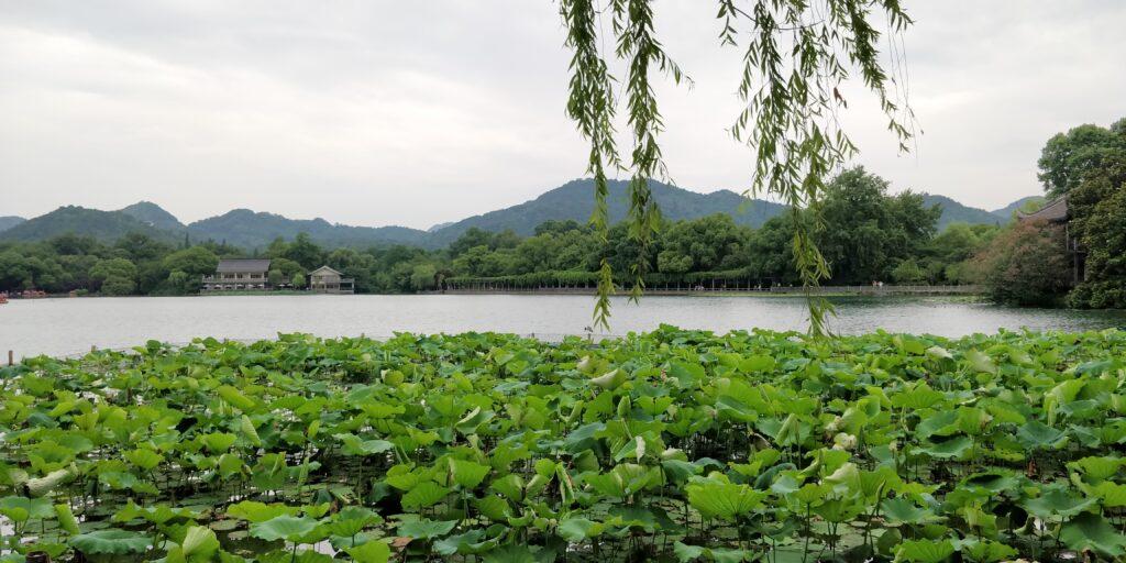 Hangzhou Westlake 13