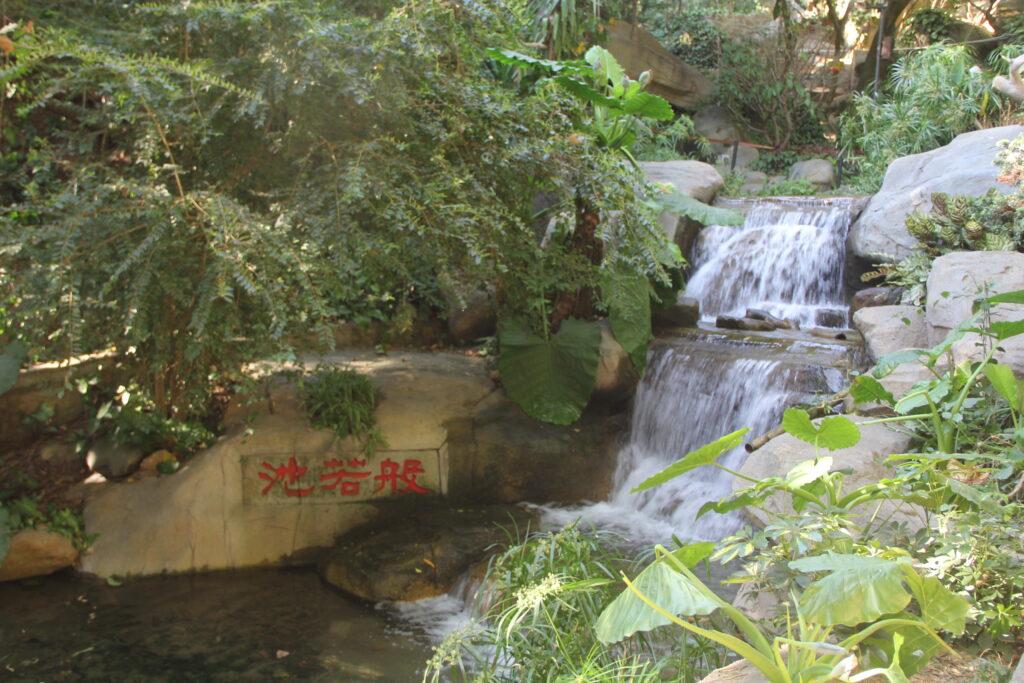 Nanputuo Temple Xiamen 8