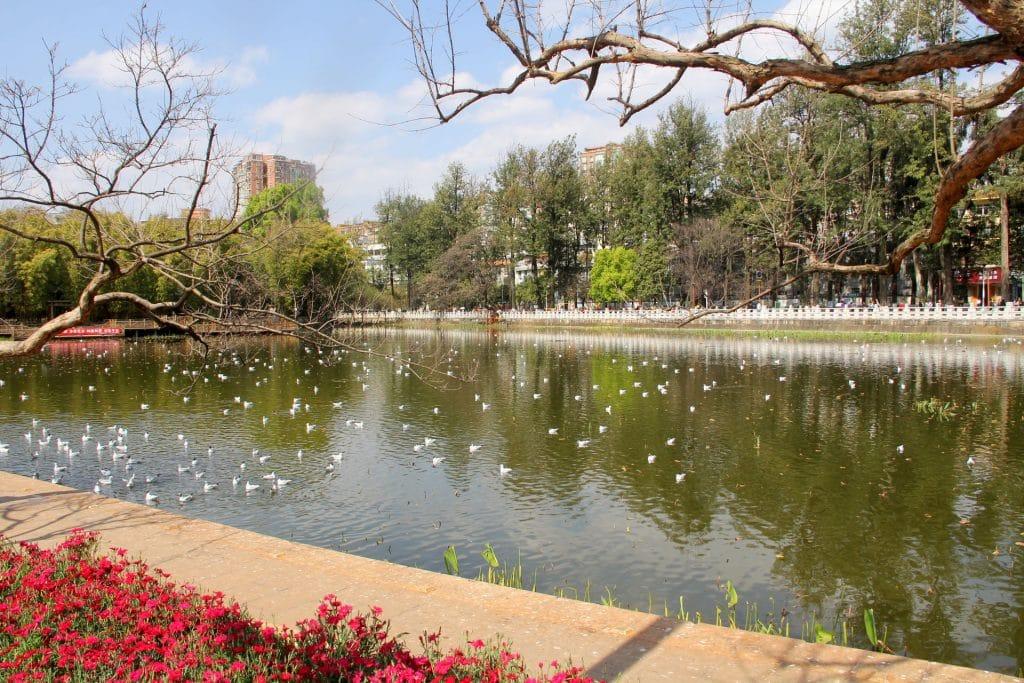 Kunming Cuihu Park