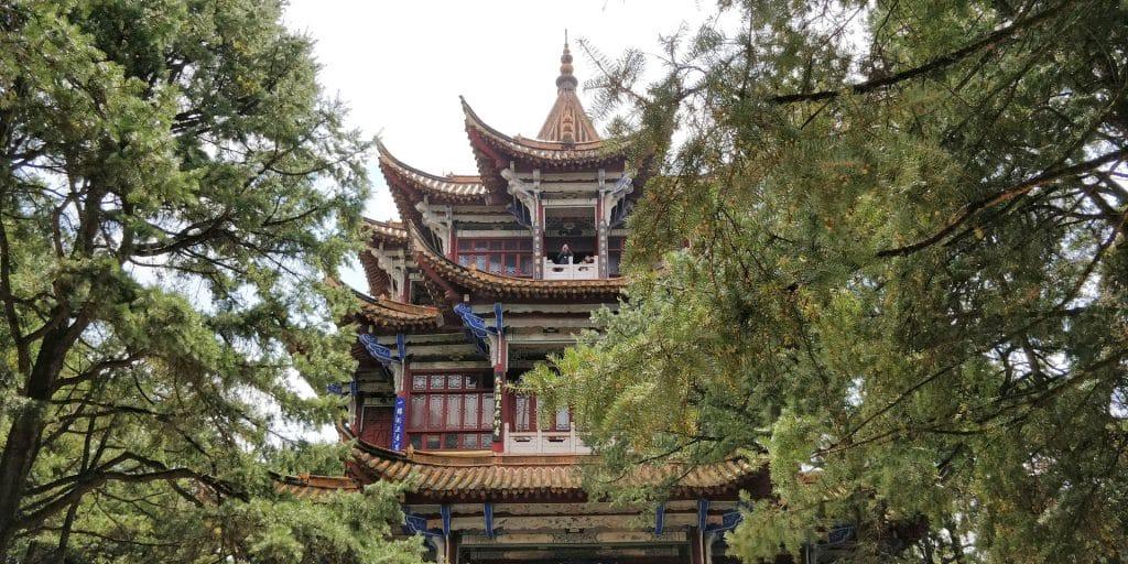 Kunming Jindian National Forest Park 24