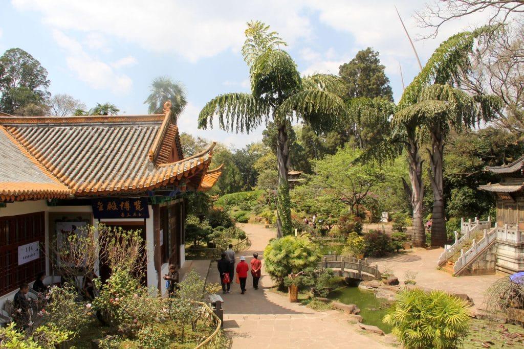 Kunming Jindian National Forest Park 6
