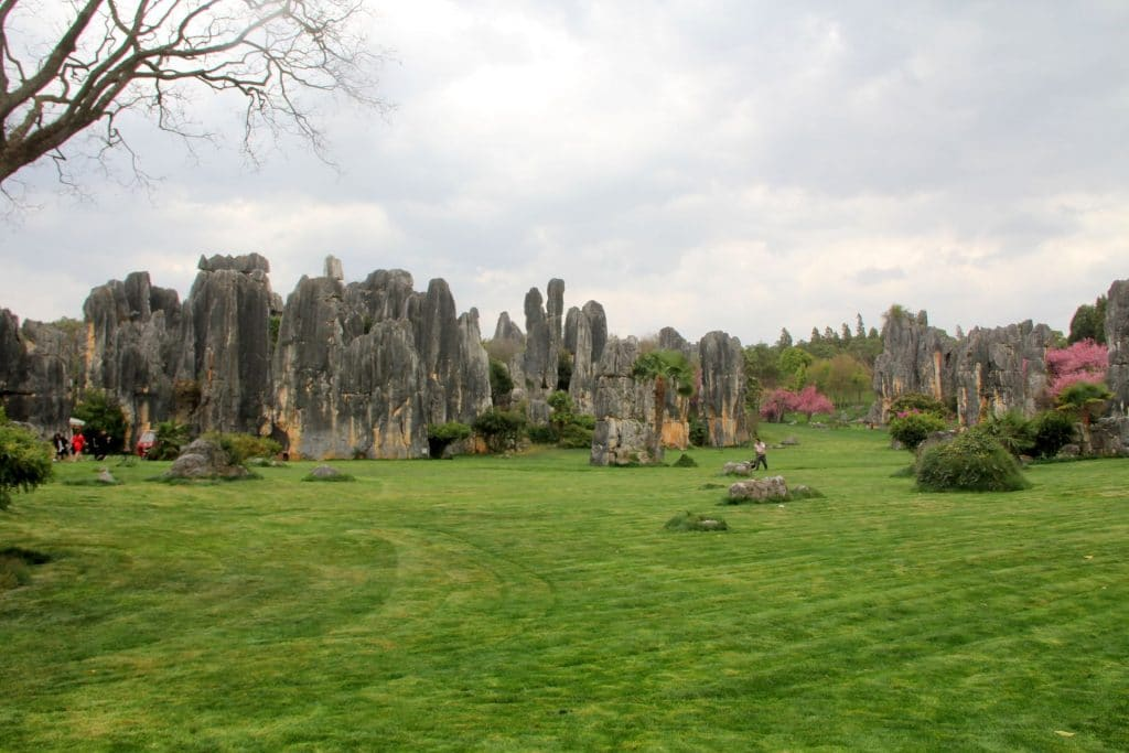 Shilin Stone Forest Kunming 40