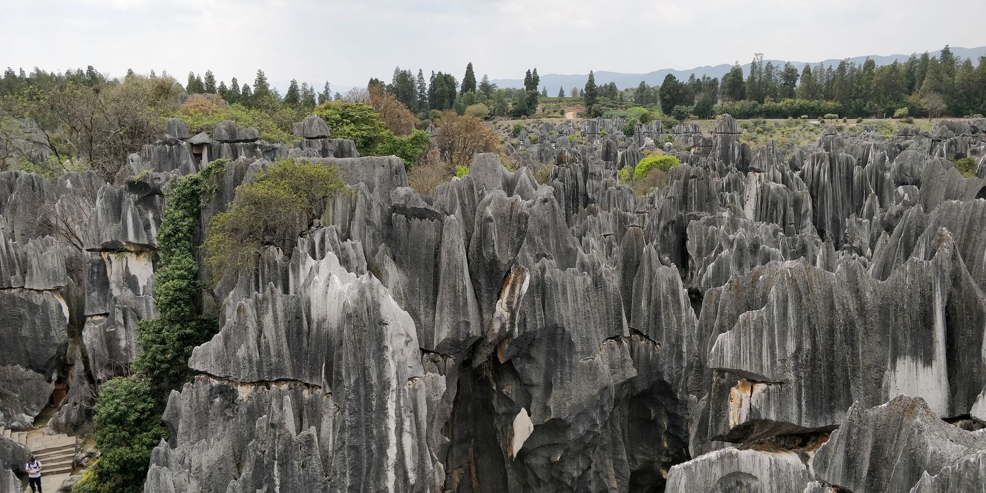 Shilin Stone Forest Kunming 9