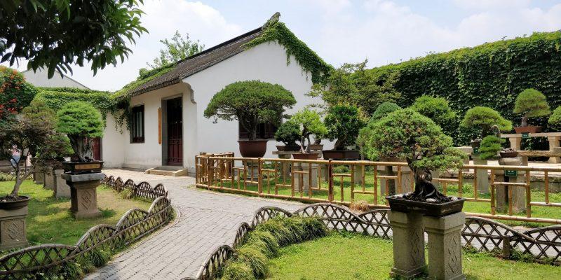 The Humble's Administrator's Garden Suzhou 6