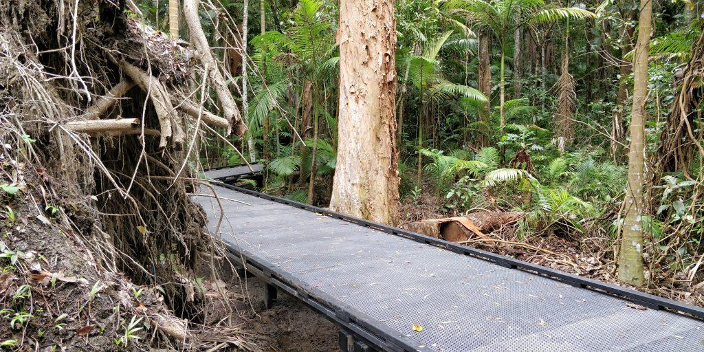 Cairns Flecker Botanic Gardens 2