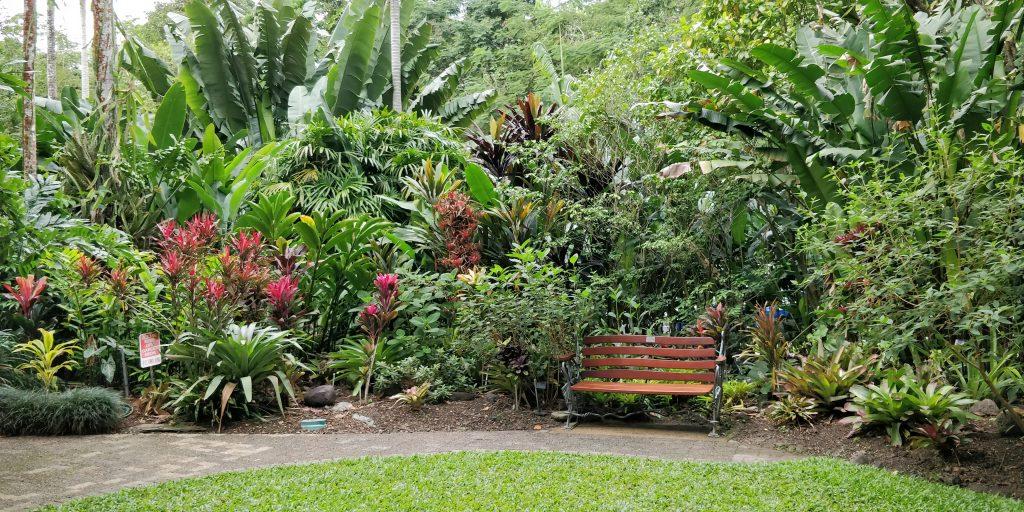 Cairns Flecker Botanic Gardens 4