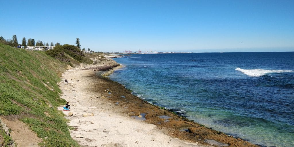 Cottesloe Beach Perth 4