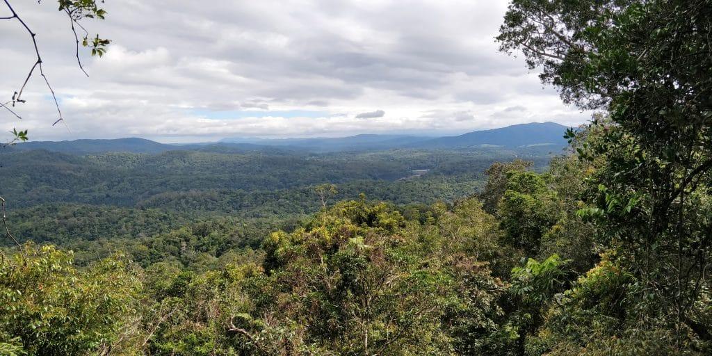 Kuranda Skyway Viewpoint