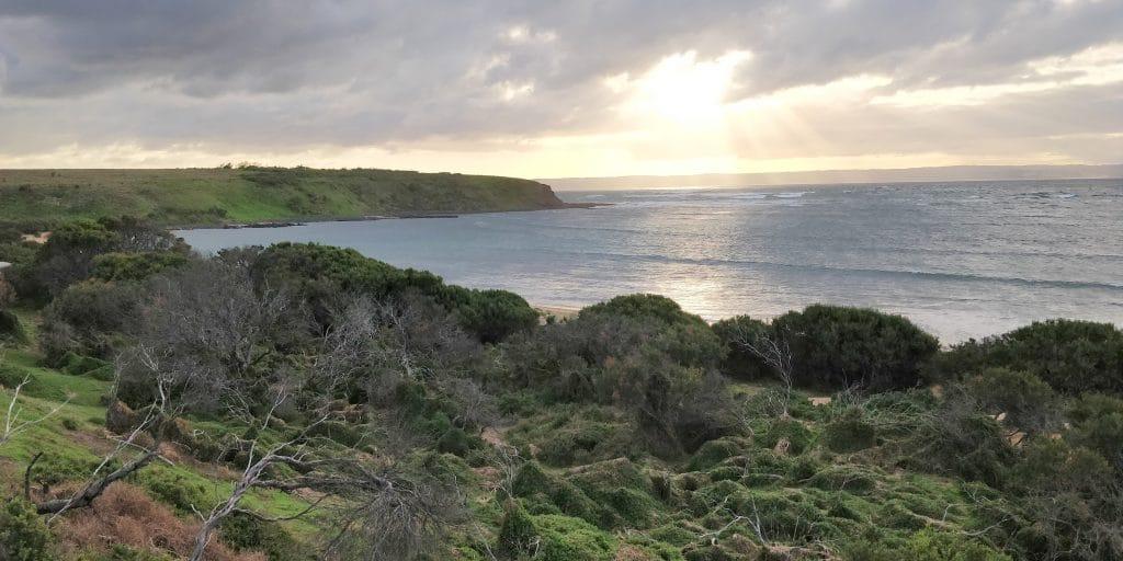 Philipp Island Cowrie Beach 2