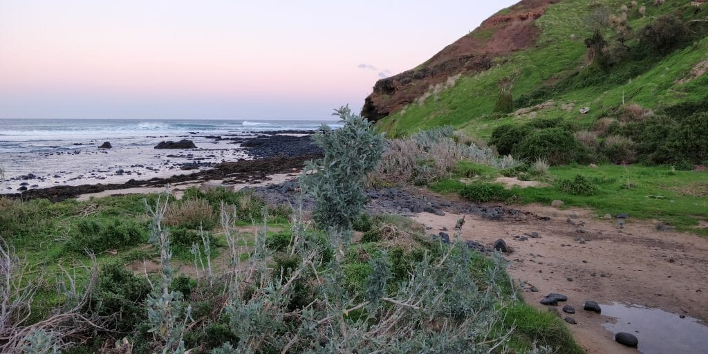 Philipp Island Shelley Beach