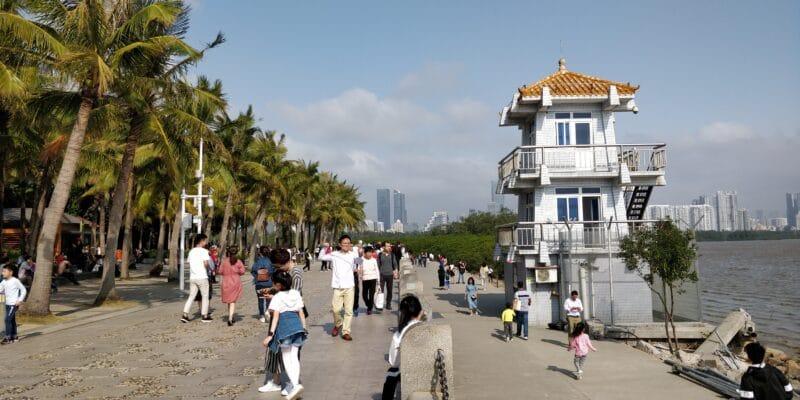 Shenzhen Coastal Ecological Park 4