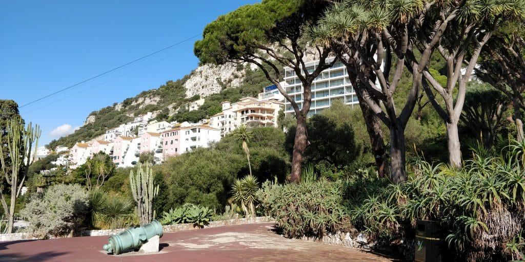 Gibraltar Botanic Gardens 4
