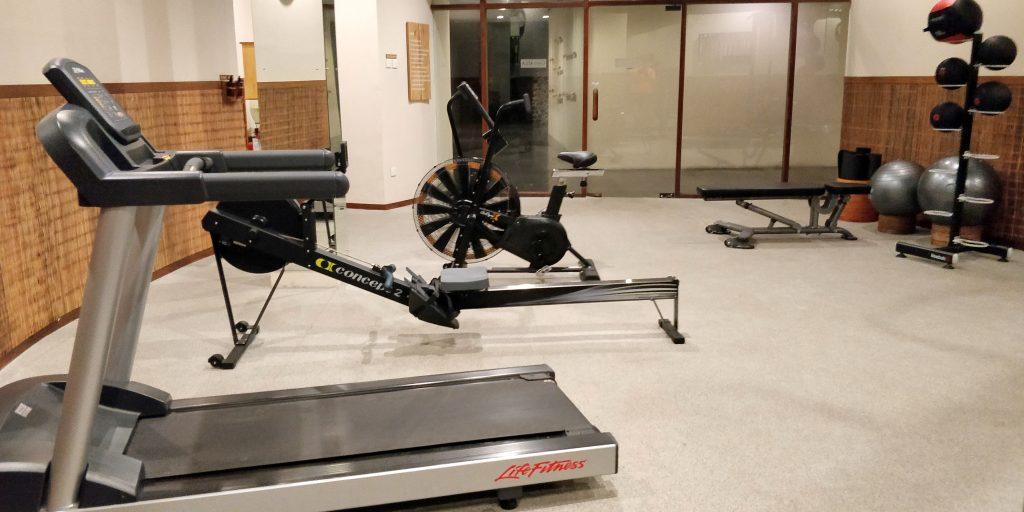 Alila Ubud Fitness 3