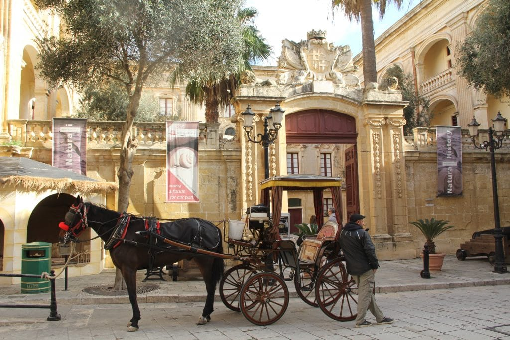 Mdina National Museum Of Natural History Malta