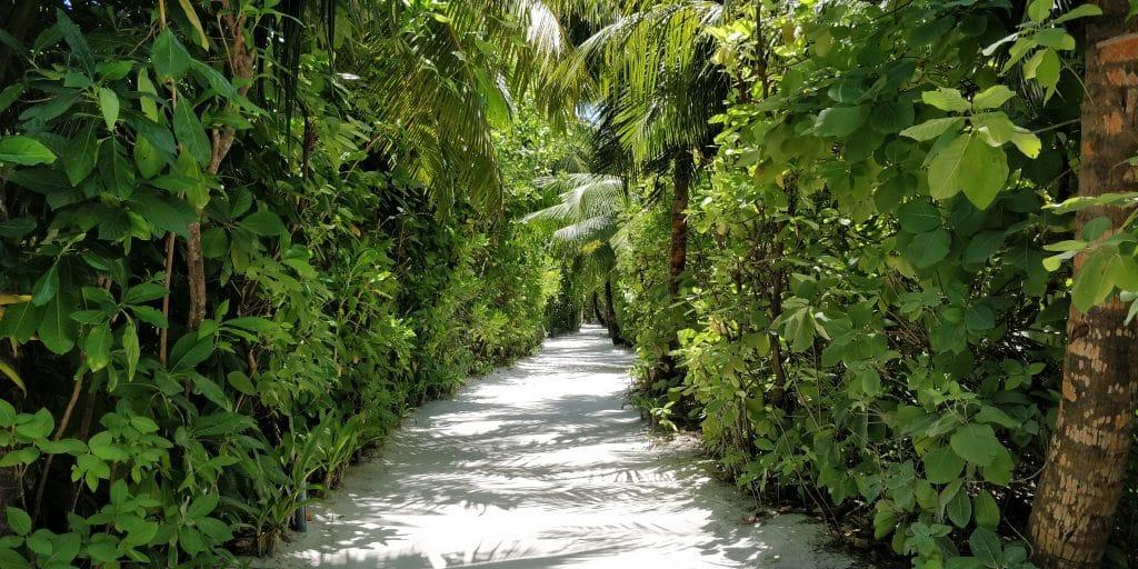 Conrad Maldives Rangali Island Wege