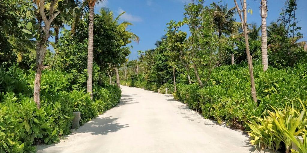 Waldorf Astoria Maldives Ithaafushi Weg