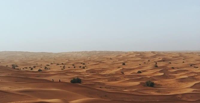Dubai Deserr