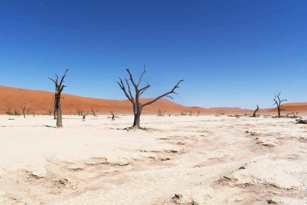 Top 5 Reiseziele Namibia