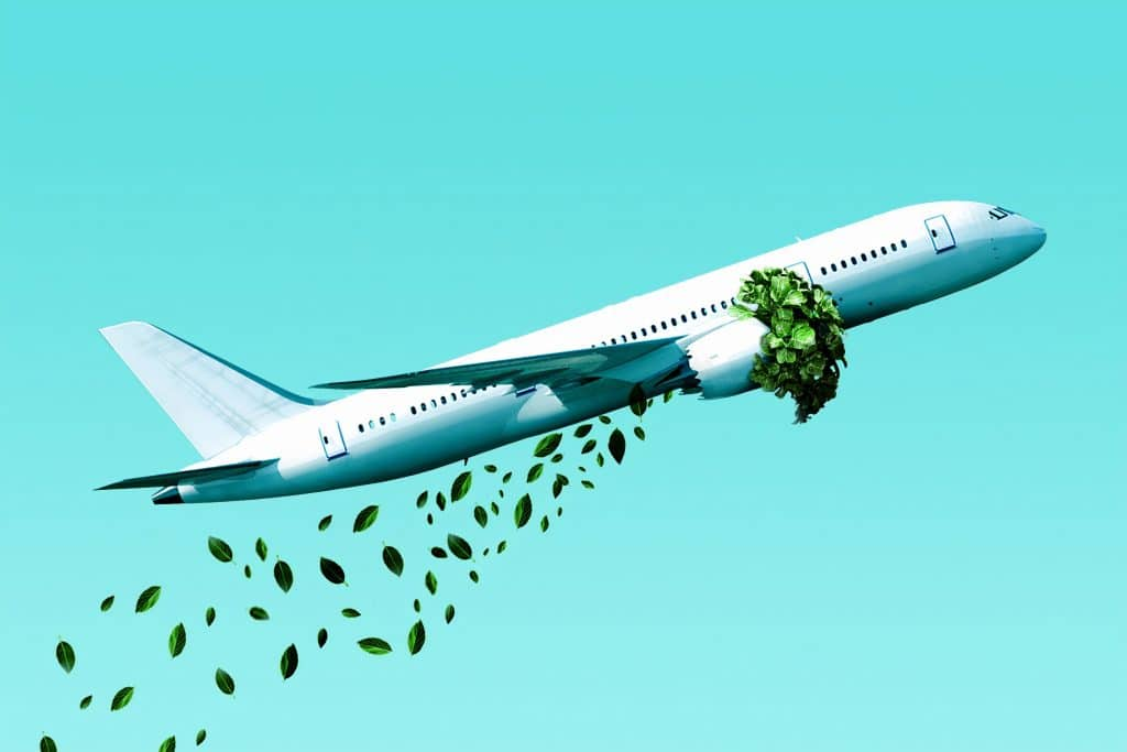 Fliegen Umwelt