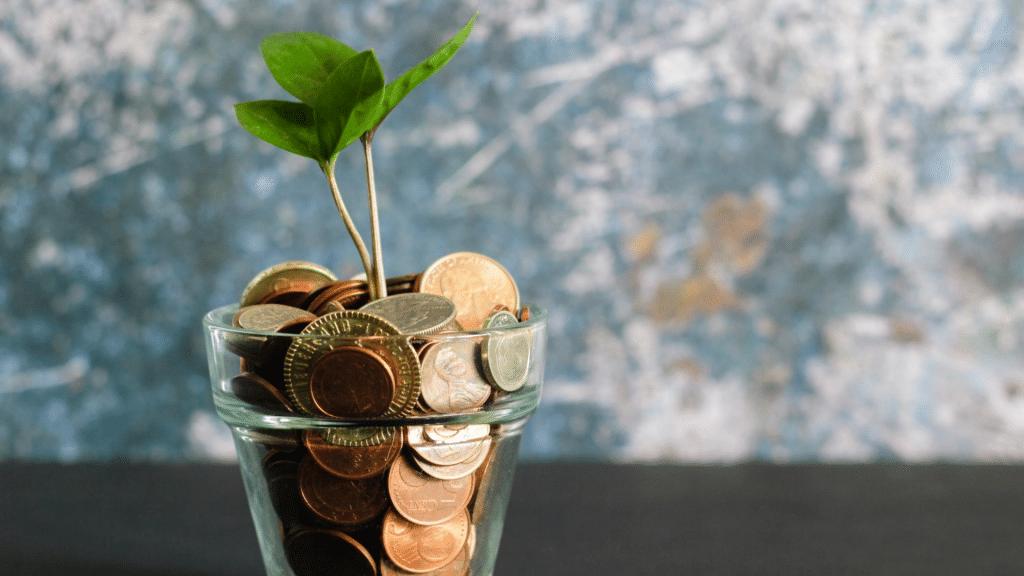 Ökobanken Nachhaltigkeit Grünes Geld