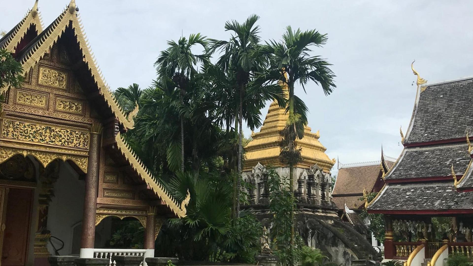 Thailande Tobi
