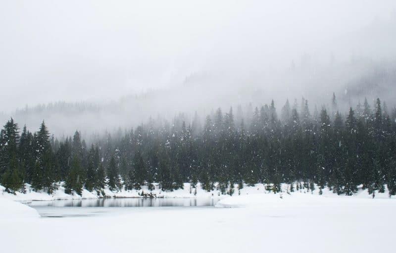 Snow Mood