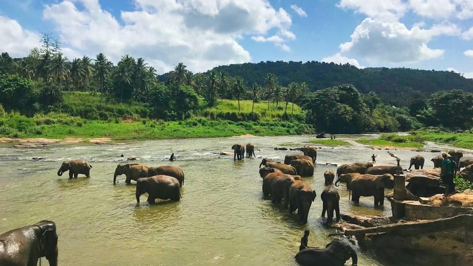 Sri Lanka Reservat 2
