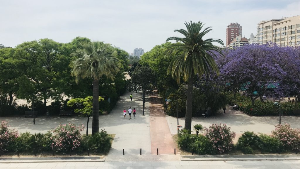 Valencia 6