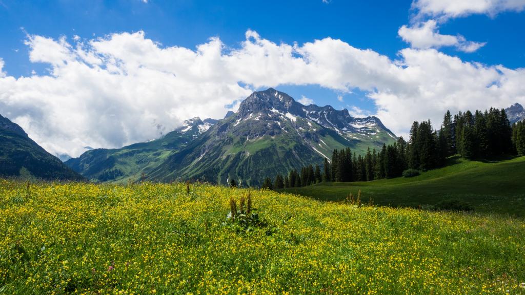 Lech Vorarlberg Austria